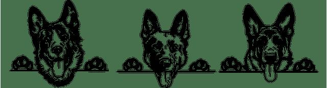 Duitse Herder blog